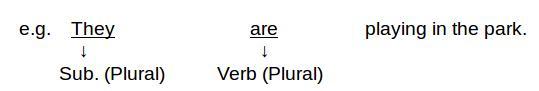 verb agreement three